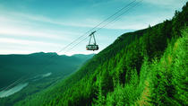 Private Tour: Capilano Suspension Bridge and Grouse Mountain, Vancouver, Private Sightseeing Tours