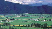 Private Tour: Vancouver Half Day Wine Tasting Tour, Vancouver, Wine Tasting & Winery Tours