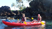 Makena Bay Kayak and Turtle Town Snorkel Adventure, Maui, Nature & Wildlife