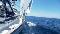 Sail Tour along the Conero Riviera, Marche, Private Sightseeing Tours
