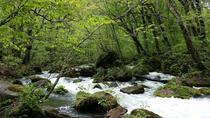 3-Day Tour of Tanesashi Kaigan and Oirase Keiryu in Aomori Prefecture, Tohoku, Multi-day Tours