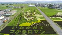 Half-Day Tour in Aomori: Inakadate Village Rice Paddy Art and Japanese Swords Experience, Tohoku
