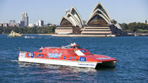 Sydney Harbour Hop-on Hop-off Cruise, Sydney, Dolphin & Whale Watching