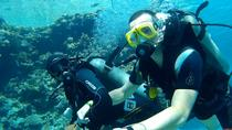 Full-Day Intro Diving and Snorkeling at Tiran Island, Sharm el Sheikh, Snorkeling