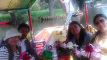 Excursion privée : Xochimilco, Coyoacan et musée Frida Kahlo, Mexico City, Private Sightseeing Tours