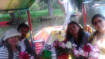 Private Tour: Xochimilco, Coyoacan and Frida Kahlo Museum, Mexico City, Private Sightseeing Tours