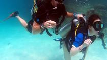 Half-Day PADI Discover Scuba Diving in Koh Phi Phi, Krabi, Scuba Diving