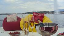 Champagne Private Tour on Catamaran Terrasse in Geneva, Ginevra