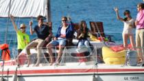 Full-Day Private Sailing Cruise in Geneva, Geneva