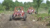 Cozumel Shore Excursion: Xrail Adventure Tour