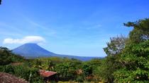 Half-Day Nature Tour in Isla de Ometepe, Nicaragua, Nature & Wildlife