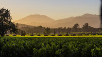 6-Hour Wine Country Tour from San Francisco, San Francisco, Wine Tasting & Winery Tours