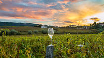 8 Hour Wine Country Tour from San Francisco, San Francisco