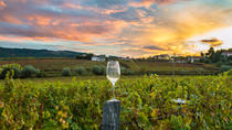8 Hour Wine Country Tour from San Francisco, San Francisco, Wine Tasting & Winery Tours