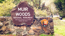 Private Muir Woods and Wine Country Tour from San Francisco, San Francisco, Half-day Tours