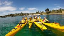 Mornington Peninsula Kayak Coastline Tour von Dolphin Sanctuary, Mornington Peninsula