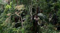 Half-Day Flying Hanuman Ziplining Adventure in Phuket Including Lunch, Phuket, Ziplines