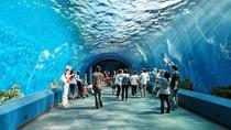 Pattaya Underwater World Admission with Hotel Transfers, Pattaya, Attraction Tickets