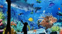 Sea Life Ocean World - Admission Only, Bangkok, Attraction Tickets