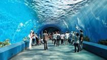 Underwater World Pattaya General Admission with Hotel Transfers, Pattaya, Attraction Tickets