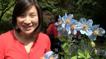 Victoria Shore Excursion: Butchart Gardens Tour, Victoria, Bus & Minivan Tours