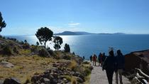 Full-Day Guided Lake Titicaca Tour: Uros Floating Islands and Taquile Island, Puno, Day Trips