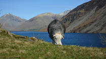 High Adventure Day Tour from Keswick, Keswick, null