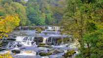 The Yorkshire Dales Tour from Windermere, Windermere, Day Trips