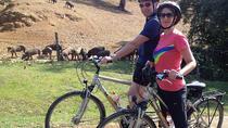 Countryside Bike Tour in Seville, Seville, Bike & Mountain Bike Tours