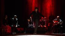 Flamenco Show at Theatre Principal in Barcelona