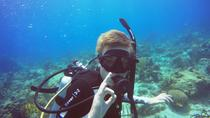 PADI Open Water Certification, St Thomas, Scuba Diving
