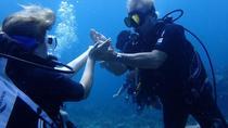 Single-Tank Dive for Certified Diver, St Thomas, Scuba Diving