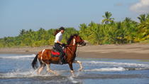 Beach Horseback Riding Adventure from Jaco, Jaco, Horseback Riding