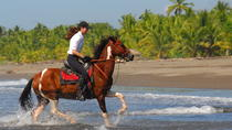 Beach Horseback Riding Adventure near Jaco, Jacó