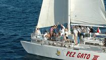 Sonnenuntergang Party Cruise in Los Cabos an Bord der Pez Gato, Los Cabos, Sunset Cruises