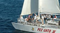 Sunset Party Cruise in Los Cabos aboard the Pez Gato, Los Cabos, Sunset Cruises