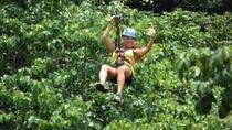 Zipline at Pura Aventura, Tamarindo, Ziplines