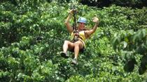 Zipline Canopy Tour at Pura Aventura, Tamarindo, null