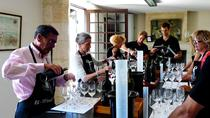 Plovdiv: Wine Tasting Workshop, Plovdiv
