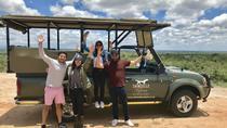 Kruger National Park Guided Day Tour including Hotel Pick-Up and Drop-Off, Kruger National Park,...