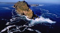 Cape Peninsular Day Tour from Cape Town, Cape Town, Private Day Trips
