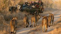 Private 9-Hour Cape Town Big Game Safari with Breakfast, Cape Town, Private Sightseeing Tours