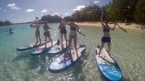 Lagoon Explorer, Rarotonga, Stand Up Paddleboarding