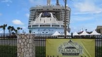 Montego Bay Beach and City Tour, Falmouth