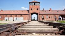 Auschwitz - Birkenau Trip, Krakow, Half-day Tours