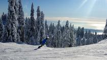 Hit The Slopes - Ski or Snowboard The Local Vancouver Mountains, Vancouver, 4WD, ATV & Off-Road ...