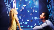 Gardaland SEA LIFE Aquarium Skip-the-Line Entry Ticket, Lake Garda, Attraction Tickets