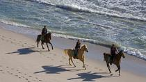 Horseback Riding Tour from Punta Cana, Punta Cana, Horseback Riding