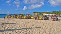 Punta Cana Buggy Adventure: Natural Pool, Coffee Plantation and Macao Beach, Punta Cana, Snorkeling