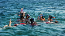 Snorkeling Tour for small groups, Punta Cana, Day Cruises